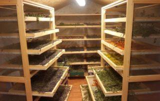 zeliscna kmetija rogelja